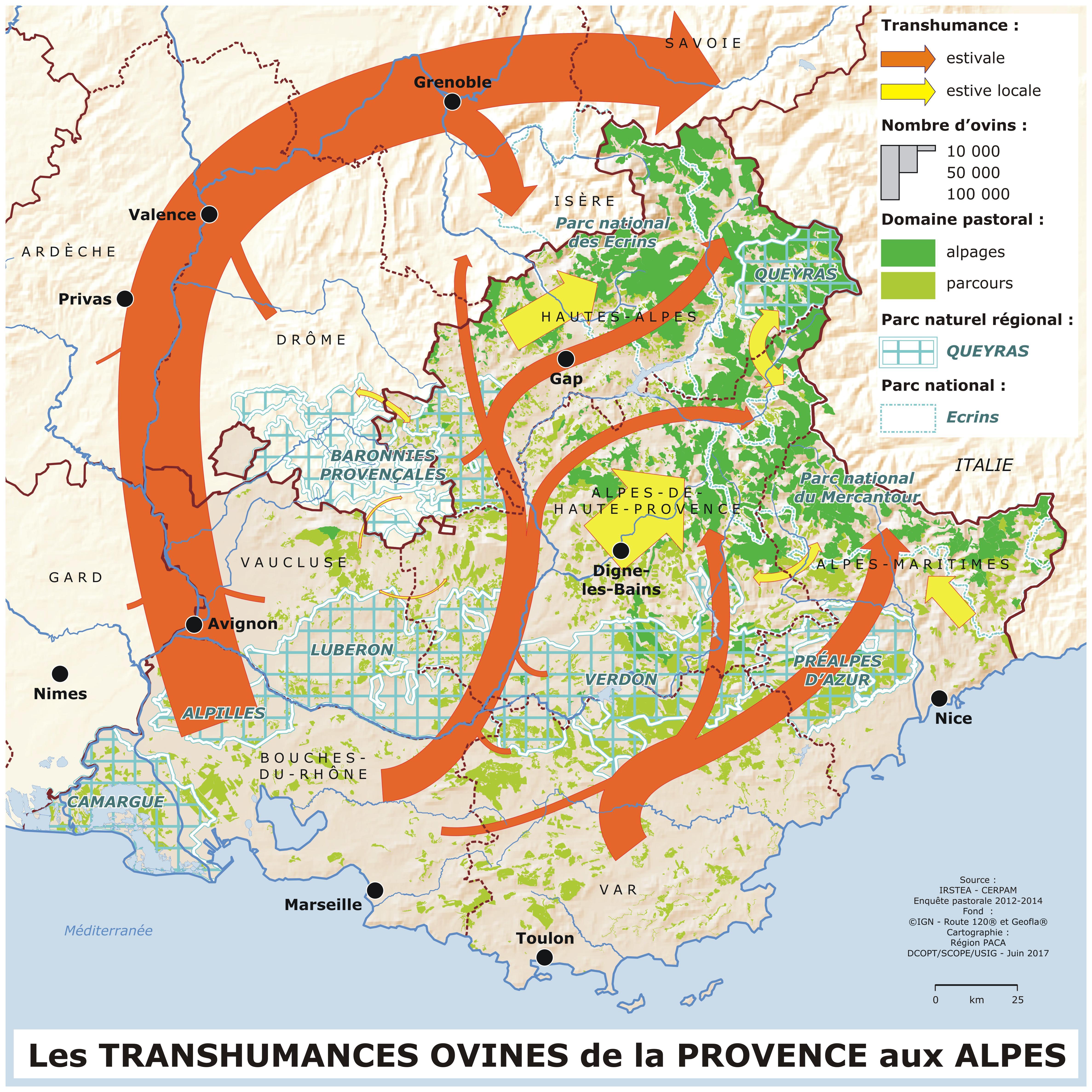 Carte des transhumances ovines de la Provence aux Alpes