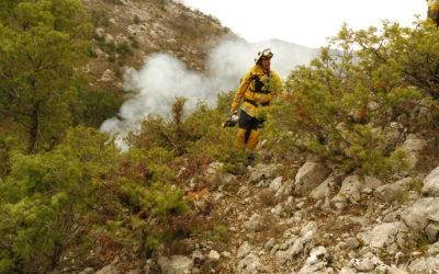 Dans les Alpes-Maritimes, prévention des incendies et pastoralisme font bon ménage