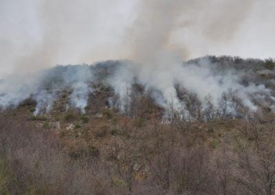 A l'adret au contraire, le feu s'est bien propagé là où il y avait de la végétation à brûler