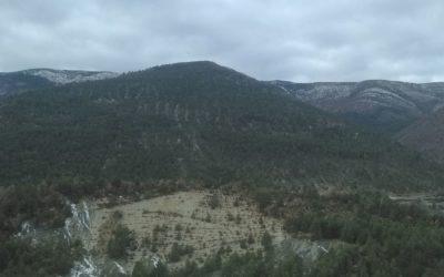 Alpes-de-Haute-Provence – Regrouper pour valoriser : création d'une Association Syndicale Libre