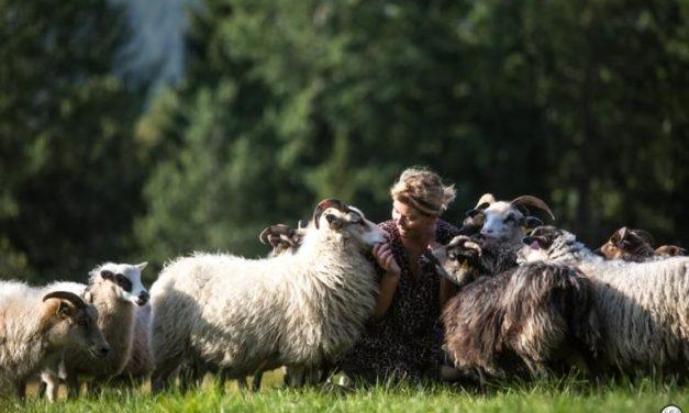 International : coopération avec la Norvège sur la question de la prédation