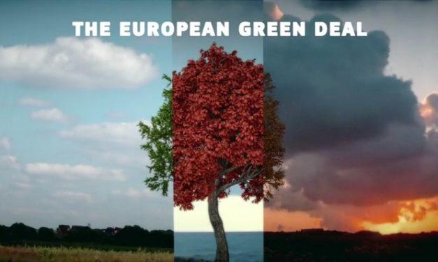Un « pacte vert » européen en projet, un espoir pour un « green deal » pastoral dans la PAC ?