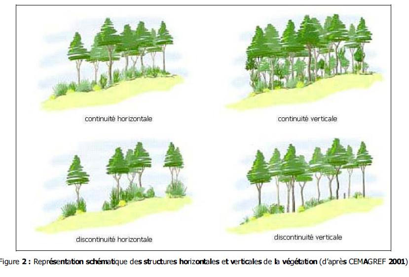 Schéma : RCC n°12, Guide pratique pour l'entretien des coupures de combustible par le pastoralisme, 2009, page 3