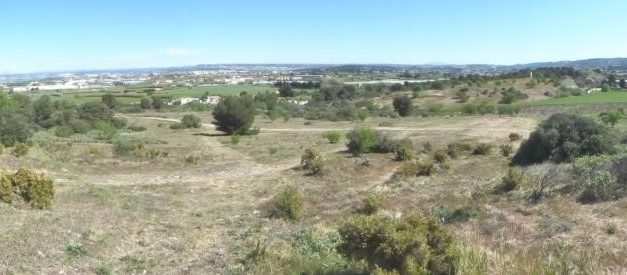 Quand une ville du pourtour de l'étang de Berre a des envies d'élevage pastoral…