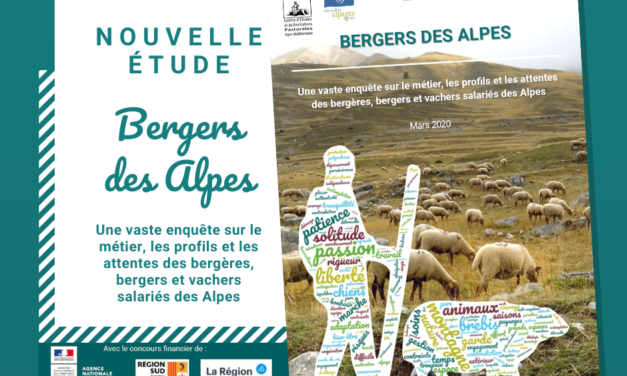 Bergers des Alpes : Une vaste enquête sur le métier, les profils et les attentes des bergères, bergers et vachers salariés des Alpes